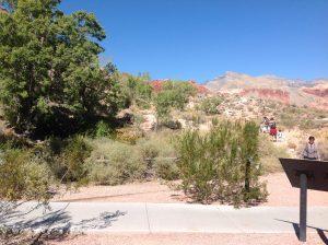 Calico Basin Trail