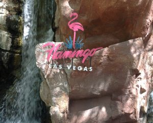 Flamingo's Wildlife Habitat