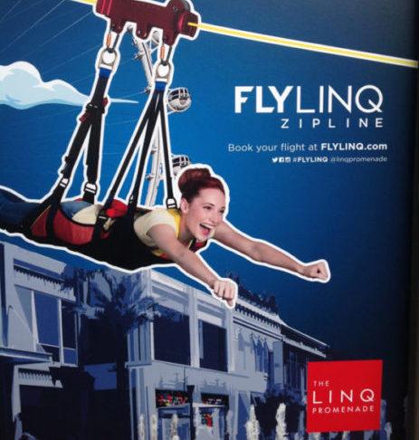The Zipline @the Linq